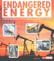 Endangered energy : investigating the scarcity of fossil fuels
