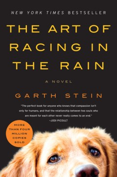 Product The Art of Racing in the Rain