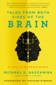 Product Tales from Both Sides of the Brain