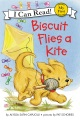 Product Biscuit Flies a Kite