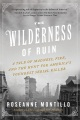Product The Wilderness of Ruin