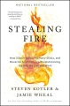 Product Stealing Fire: How Silicon Valley, the Navy Seals, and Maverick Scientists Are Revolutionizing the Way We Live and Work