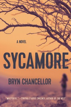 Product Sycamore