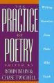 Product The Practice of Poetry