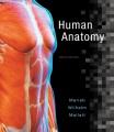 Product Human Anatomy