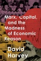 Product Marx, Capital, and the Madness of Economic Reason