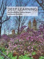 Product Deep Learning
