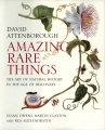Product Amazing Rare Things