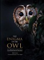 Product The Enigma of the Owl