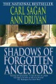 Product Shadows of Forgotten Ancestors