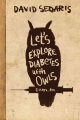 Product Let's Explore Diabetes with Owls