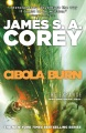 Product Cibola Burn
