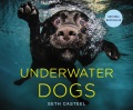 Product Underwater Dogs