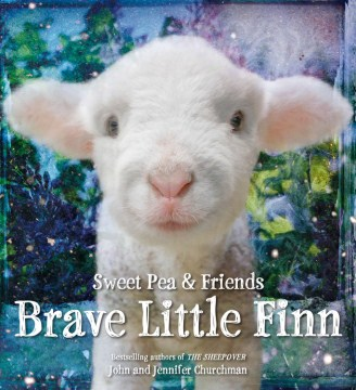 Product Brave Little Finn