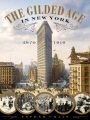 Product The Gilded Age in New York, 1870-1910