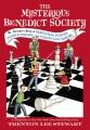 Product Mr. Benedict's Book of Perplexing Puzzles, Elusive