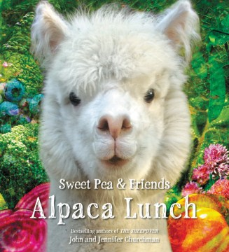 Product Alpaca Lunch
