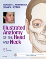 Product Illustrated Anatomy of the Head and Neck