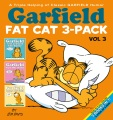 Product Garfield Fat Cat