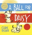 Product A Ball for Daisy