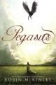 Product Pegasus