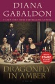 Product Dragonfly in Amber