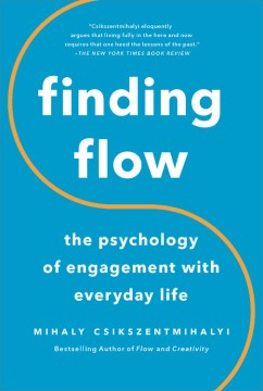 Product Finding Flow: The Psychology of Engagement With Everyday Life