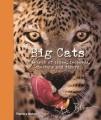 Product Big Cats
