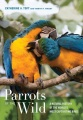 Product Parrots of the Wild