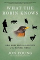 Product What the Robin Knows