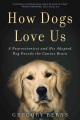 Product How Dogs Love Us