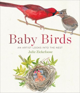 Product Baby Birds: An Artist Looks into the Nest