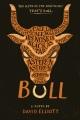 Product Bull