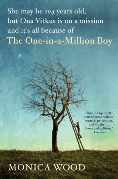 Product The One-in-a-Million Boy