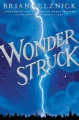 Product Wonderstruck: A Novel in Words and Pictures