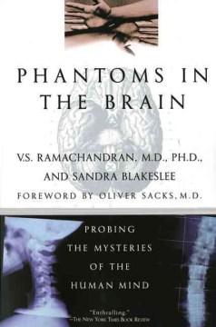 Product Phantoms in the Brain: Probing the Mysteries of the Human Mind