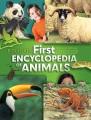 Product Kingfisher First Encyclopedia of Animals