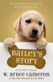 Product Bailey's Story