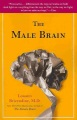 Product The Male Brain