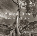 Product Ancient Trees