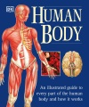 Product Human Body