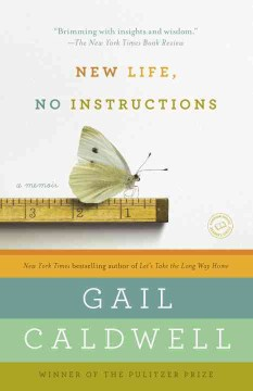 Product New Life, No Instructions: A Memoir