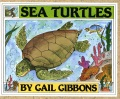 Product Sea Turtles