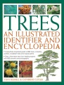 Product Trees