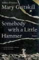Product Somebody With a Little Hammer