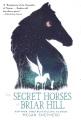 Product The Secret Horses of Briar Hill