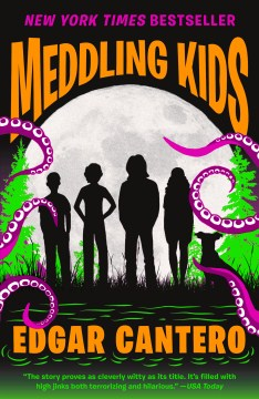 Product Meddling Kids
