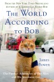 Product The World According to Bob