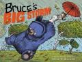 Product Bruce's Big Storm