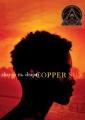 Product Copper Sun